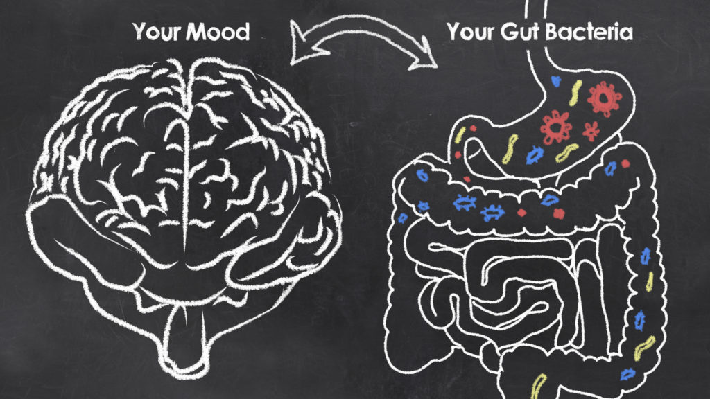 probiotics and your mood