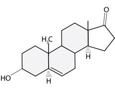 DHEA molecule