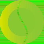 Sanesco logo