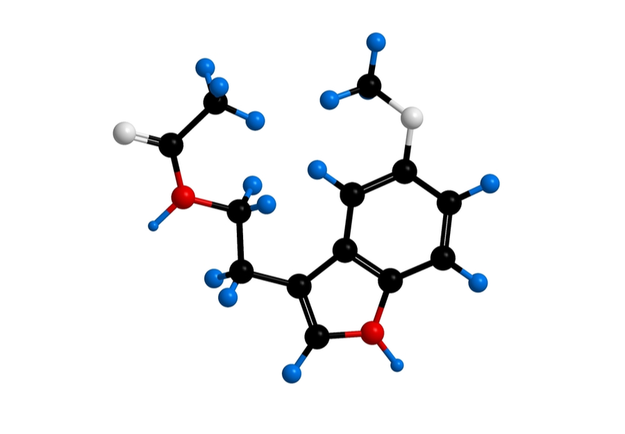 Melatonin molecule