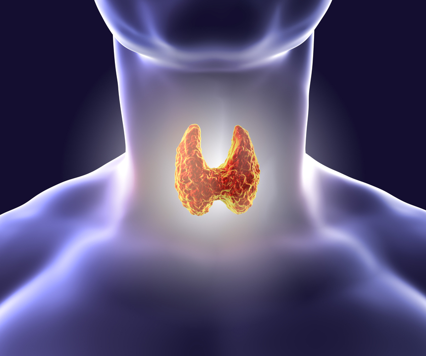Thyroid and CSM - Sanesco Health